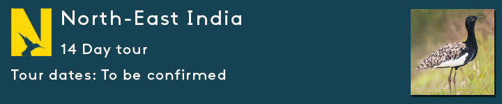 TEASER-NORTH-EAST-INDIA